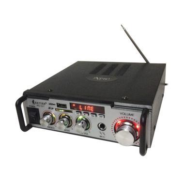 Rayden RD 027 USB AC/DC Amplifier