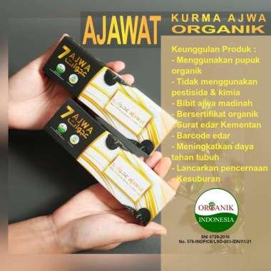 Kurma Ajwa Madinah Ajawat Premium Isi 7 Butir Kurma Ajwa Organik