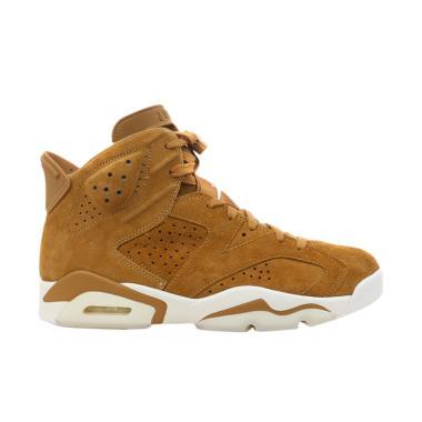 NIKE Air Jordan 6 Retro Sepatu Basket Pria - Brown