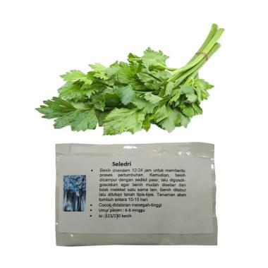Puriegarden Seledri Benih Tanaman [125 seeds]