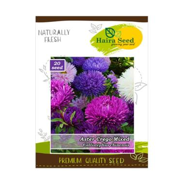 Haira Seed Benih Bibit Bunga Aster Crego Mix Tanaman 9ce6e86b5d