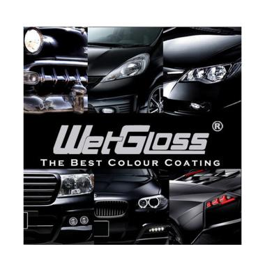 WetGloss Permanent Coating System Paint Protection [Kategori M]