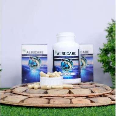 harga Albucare Obat Herbal Luka Bakar Knalpot [Original] Blibli.com