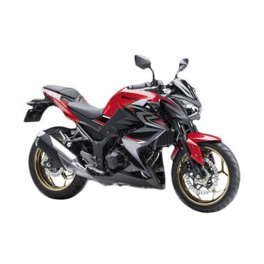 Kawasaki Z250 ABS Sepeda Motor [OTR Jakarta & Bogor]