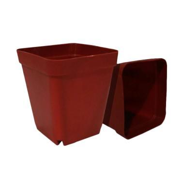 Jirifarm 10394 Plastik Pot Tanaman [5 Pcs]