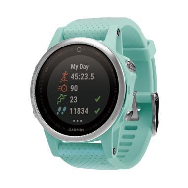 Garmin Fenix 5S Sapphire Smartwatch - Frost Blue