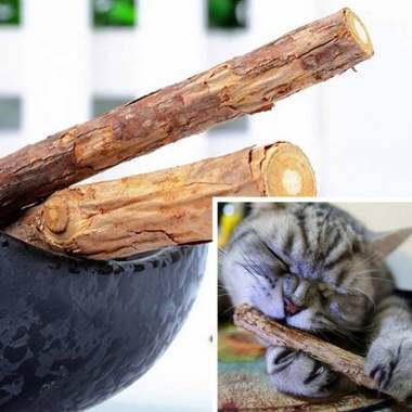 harga Bluelans Pet Cat Kitten Chew Stick Treat Toy Natural Wood Catnip Molar Chewing Tool [2 Pcs] Blibli.com