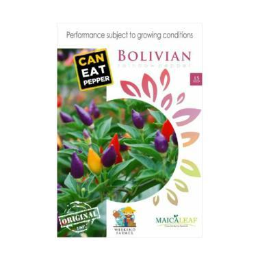 Maica Leaf Cabe Bolivian Rainbow Benih Tanaman [15 Benih]