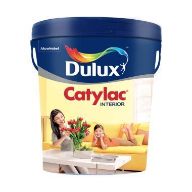 74 Gambar Warna Cat Rumah Catylac Paling Hist