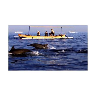 LapakTrip Dolphin Package 1 Paket Wisata Domestik [4D3N]