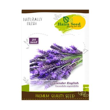 Haira Seed Bunga Lavender English Bibit Tanaman