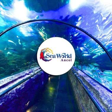 tiket masuk seaworld