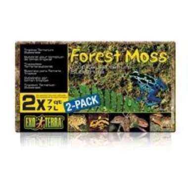 harga Forest Moss Exo Terra Lumut Hutan Kering Exoterra isi 2 Lempeng 14 L COKLAT Blibli.com