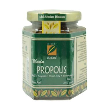 Serambi Botani IPB Madu Propolis [240 g]