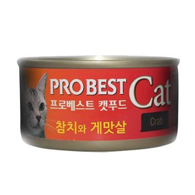 Jual Kucing Anggora Terbaru Harga Murah Blibli Com