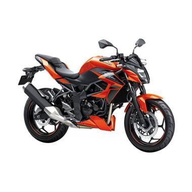 Kawasaki Z250SL Sepeda Motor [VIN 2018 - OTR Palangkaraya]
