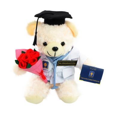 Kado Wisudaku Teddy Bear Profesi Dokter Boneka 578a8e78ba