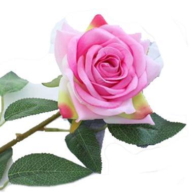 Bunga Mawar Tangkai Kualitas Branded Harga Baru Agustus 2020 Blibli Com