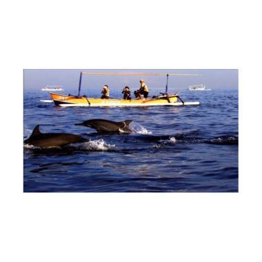 LapakTrip Dolphin Package 3 Paket Wisata Domestik [4D3N]