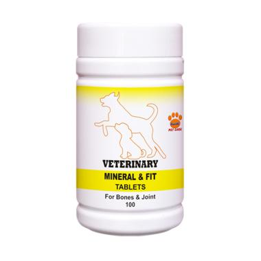 Raid All Veterinary Mineral & Fit Vitamin Anjing