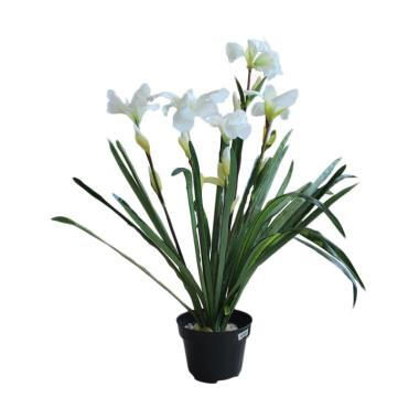 Festiva Furniture CH0829A Artificial Plant In Pot Bu... Rp 69.000. Kana ... ebdab8f68d