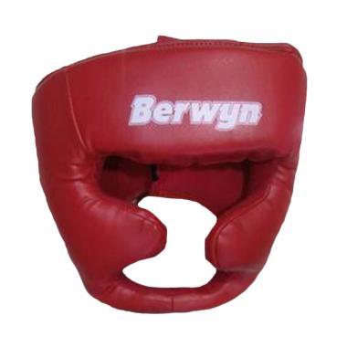Berwyn Kids Boxing Helmet - Red
