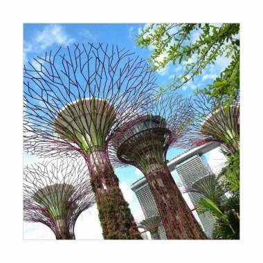 Garden By The Bay Singapore Ticket