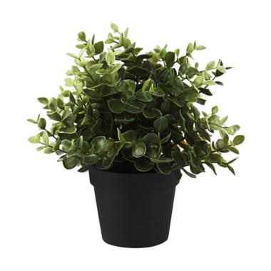 Daftar Harga Bunga Plastik Di Pot Ikea Terbaru Maret 2019 ... a3705423c9