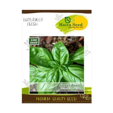 Haira Seed Herb Sweet Basil Bibit Tanaman