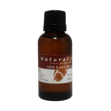 Natural Hut Citronella 100% Pure Essential Oil [5 mL]
