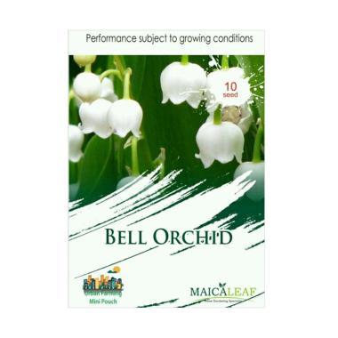 Maica Leaf Bunga Bell Orchid Benih Tanaman [10 Benih]