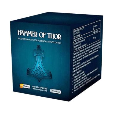 Hammer of thor forex cair