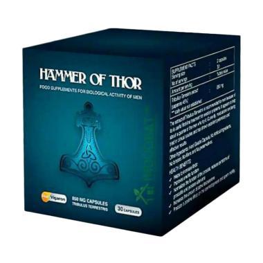 jual agen resmi hammer of thor original gold forex 850