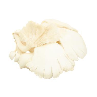 Qooali Jamur Tiram Putih [250 g] (area Bandung)