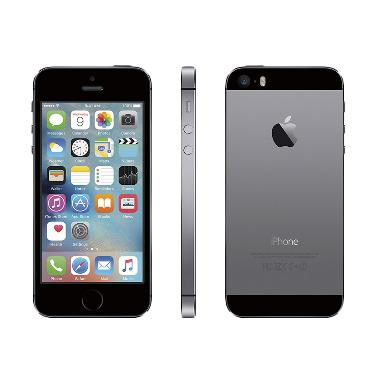 Apple iPhone 5S 32 GB Smartphone - Gray
