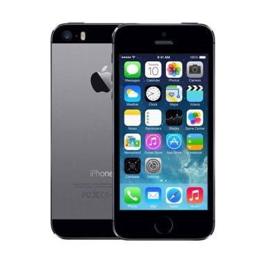 Apple iPhone 5S 64 GB Smartphone - Gray