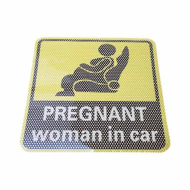 Apton Safety Sign [Pregnant Woman in Car]