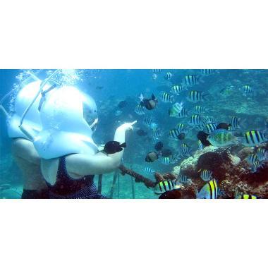 Bali Paket Seawalker Waterwalk Sanur Di Nusa Penida Lembongan