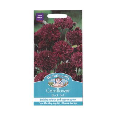 Mr Fothergill's Cornflower Black Ba ...