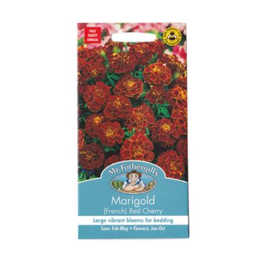 Mr Fothergill's Marigold French Red ...
