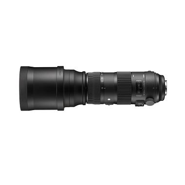 Sigma 150-600mm F5-6.3 DG OS HSM Sports Lensa Kamera for Nikon